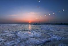 Море обстреливает рассказ Стоковое Изображение RF
