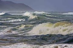 море одичалое Стоковая Фотография