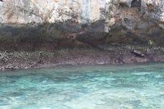 Море около скалистого берега Стоковые Фото