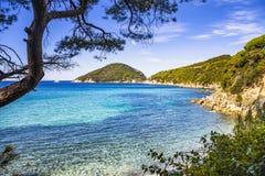 Море острова Эльбы, пляж Portoferraio Viticcio побережье и деревья Tu Стоковая Фотография RF