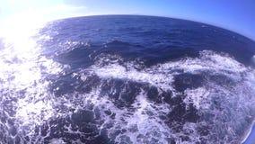 Море Охотска видеоматериал