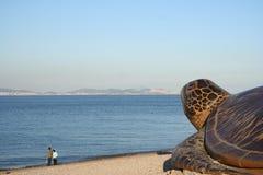 море пар Стоковые Фотографии RF