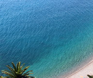 Море, пальмы, песчаный пляж Стоковое Изображение