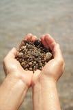 море песка ладоней стоковое фото