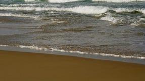 море песка травы дюн стоковое фото rf
