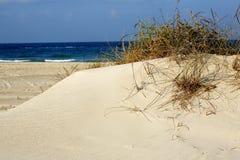 море песка травы дюн стоковое фото
