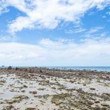 море пляжа утесистое Стоковые Фотографии RF