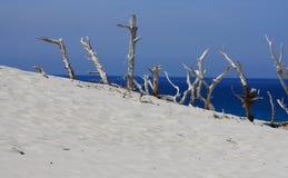 море пляжа Стоковые Фотографии RF