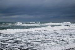 Море, пляж и травы в зиме Стоковая Фотография
