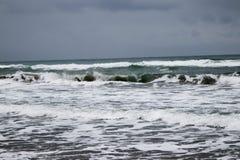 Море, пляж и травы в зиме Стоковые Изображения