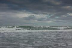 Море, пляж и травы в зиме Стоковые Фотографии RF