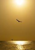 море подъема стоковая фотография