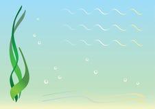море пола Стоковое Изображение