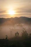 Море пункта взгляда тумана Krungshing тумана Стоковое Изображение