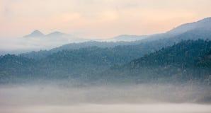 Море пункта взгляда тумана Krungshing тумана Стоковое Изображение RF