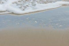 Море, пляж, с, волны бело, Стоковое Фото