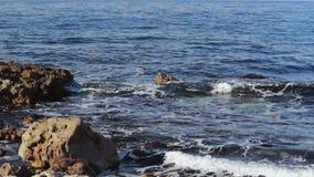 Море развевает нежно бить на пляже утеса акции видеоматериалы