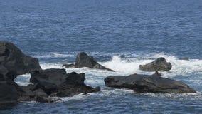Море развевает сталкиваться против утесов приходя вне от воды, создаваться пенообразный брызгает сток-видео