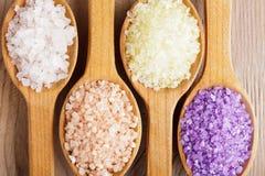 море соли различное Стоковое Фото