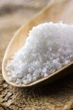 море соли стоковое фото