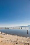 Море Солтон Стоковое Изображение RF
