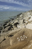 Море слова, составленное seashells Стоковые Изображения RF