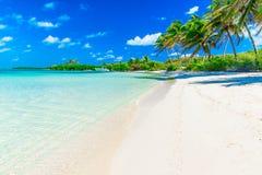 море тропическое стоковое фото