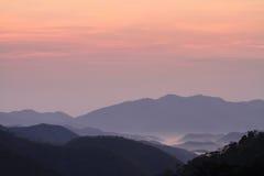 Море тумана в утре Стоковое Изображение