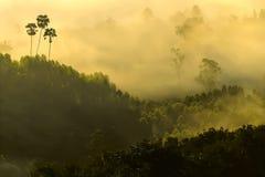 Море тумана на Khao Kho Стоковое Изображение RF