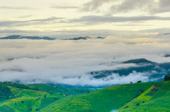 Море тумана Стоковая Фотография RF
