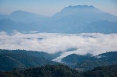 Море тумана стоковые фото