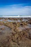 Море Флорида пляжа и камня атлантическое Стоковое Фото