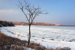 Море японии. Зима. 3 Стоковое Изображение RF