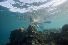 море snorceling тропическая женщина стоковая фотография rf