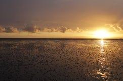 Море Wadden Стоковые Фото