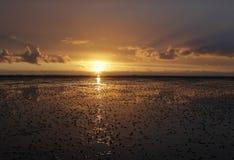 Море Wadden Стоковое фото RF