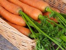 Моркови в корзине Стоковые Фото