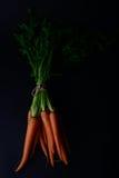 Моркови в натюрморте Стоковая Фотография