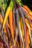 Моркови в других цветах Стоковая Фотография RF