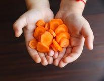Моркови в руках ребенка Стоковые Фотографии RF