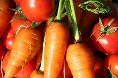 Моркови и томаты Стоковое фото RF