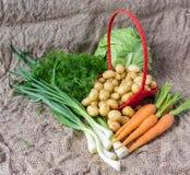 Моркови и луки картошек свежих овощей на предпосылке мешковины Стоковое фото RF