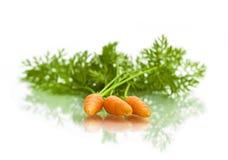 Моркови на белой предпосылке Стоковое Изображение RF