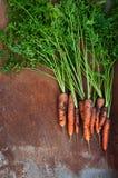 моркови органические Стоковое Изображение