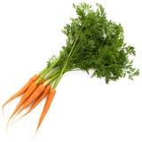 Моркови при луч листьев изолированный на белизне Стоковое Изображение RF