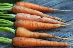 моркови свежие Стоковое фото RF