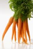 моркови свежие Стоковое Изображение