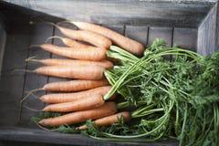 моркови свежие Стоковые Фото