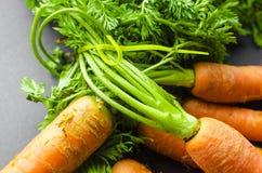 моркови свежие Стоковое Фото