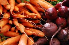 моркови свекл Стоковые Изображения